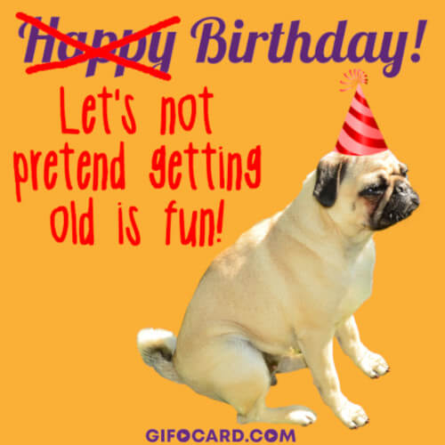 Happy Birthday dog gif animation