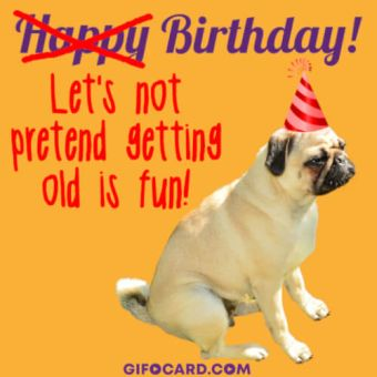 Funny Caption Birthday Card Image